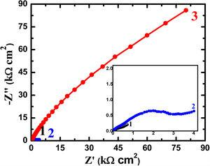 Nyquist plots of (1) Ti–5%Al–5%Cu, (2) Ti–5%Al–10%Cu, and (3) Ti–5%Al–20%Cu alloys after 48h immersion in 3.5% NaCl solutions, respectively.