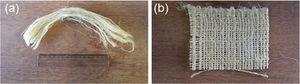 Fique fibers: (a) aligned fibers; (b) plain weave fabric.