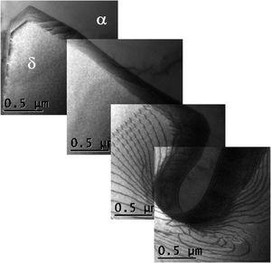 TEM bright field image. Fragmentation in progress corresponding to a WA side-plate at Δt12/8=15s.