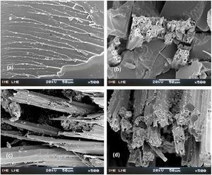 Scanning electron microscopy of fracture surfaces of composites reinforced with mallow fibers after Izod impact test (500x). (a) 0 vol%; (b) 10 vol%; (c) 20 vol% and (d) 30 vol% of fibers.