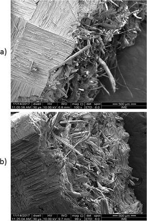 Microscopies of irradiated composite fracture surfaces GAMA 150 (a) and GAMA 300 (b).