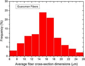 Frequency distribution of the average cross-section dimensions of guaruman fibers.