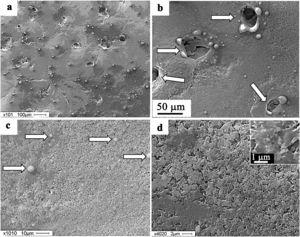 Surface structure of silumin subjected to the complex treatment by mode 1. Scanning electron microscopy. The arrows point to microcraters (b) and particles of droplet fraction (c).