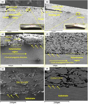 The SEM–BSE fracture micrographs and macroimage of the MCrAlY HVOF coating on stainless steel AISI 304 after the three-point bending test (a, c and e) the NiCoCrAlY and (b, e, f) CoNiCrAlY alloy. Arrows are used to indicate the cracks to the MCrAlY/substrate interface.