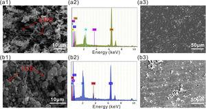 SEM and EDS analysis of X65 steel after exposure to SRB (a1, a2 and a3), IOB (b1, b2 and b3) medium alone for 21 days: (a1, b1) SEM images of corrosion products; (a2, b2) EDS analysis of corrosion products; (a3, b3) SEM images after removing corrosion products.