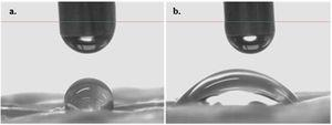 Glycerol drop on (a) untreated and (b) plasma treated fibers.