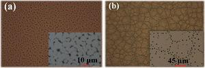 Typical optical microscope images for poly(methyl methacrylate) films after rapid thermal annealing at (a) 250 °C for 30 s and (b) 500 °C for 5 s.