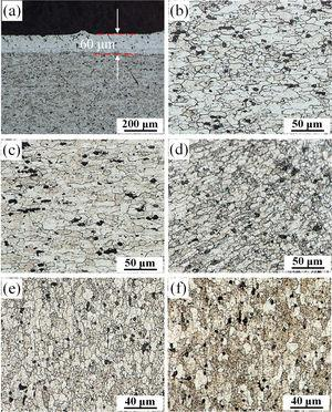Grain structures in different microstructural zones of a typical joint: (a) BM with Alclad layer; (b) BM; (c) HAZ; (d) TMAZ; (e) S-SZ; (f) P-SZ.
