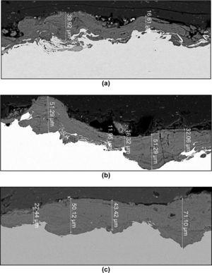 Backscattered electron images obtained from the cross-section of the WS patina after (a) 3 months, (b) 1 year, and (c) 2 years of atmospheric exposure in São Paulo City.