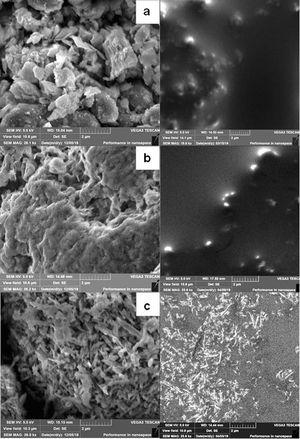 SEM-images of clay minerals used (on the left) and their mixtures with BMImDCA (on the right): a – MMT K10, mixture with IL, b – Bent, mixture with IL, c – Hal, mixture with IL.