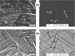 Optical (left) and SEM (right) micrographs of Ti-15Ta-10Zr alloy in the (a) as cast and (b) after homogenization heat treatment conditions.