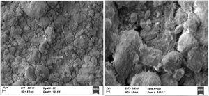 SEM micrographs of the DD3 kaolin.