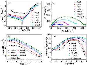 Tafel curve (a), Nyquist (b), Impedance (c), and Phase angle (d) images of copper measured in 0.5M H2SO4 solution after immersion in different concentration solution of TPBI for 12h.
