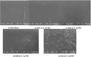 The SEM micrographs for the prepared samples.