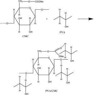 Formation of Hydrogen bond within the PVA/CMC matrix.