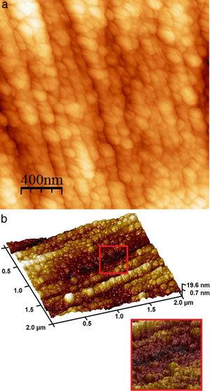 AFM surface images of the N-doped TiO2 film grown at 400°C. (a) topography; (b) 3D image. The insert shows the typical columnar structure of the film in details.