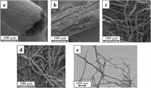 FESEM micrograph of: (a) raw sugar palm fibre; (b) sugar palm bleached fibre (SPBF); (c) sugar palm cellulose, (d) PFI refined fibre; and TEM nanograph of: (e) sugar palm nanofibrillated cellulose (SPNFCs).
