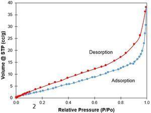 Nitrogen adsorption-desorption isotherm of scaffold D.