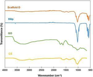 FTIR spectra of CS, GO, HAp and scaffold D.
