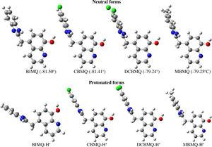 Optimized structures of the neutral and protonated forms of the studied 8-hydroxyquinoline derivatives.