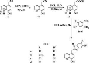 Synthesis of 8-hydroxyquinoline derivatives containing benzimidazole moiety.