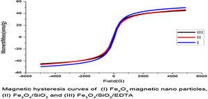 VSM study of the magnetic nanoparticles.