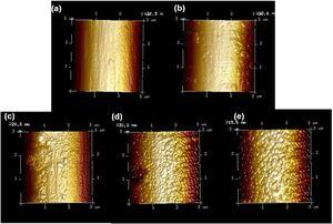 AFM images of CF-PEI&ZIF at PEI concentration of (a) 0 g·mL−1, (b) 0.001 g·mL−1, (c) 0.005 g·mL−1, (d) 0.010 g·mL−1, (e) 0.025 g·mL−1.