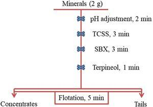 Flowsheet for flotation experiments under TCSS (depressant) and SBX (collector).