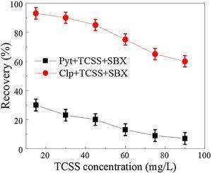 Flotation behaviors of pyrrhotite (Pyt) and chalcopyrite (Clp) at different doses of TCSS with 20mg/L SBX and pH 7.