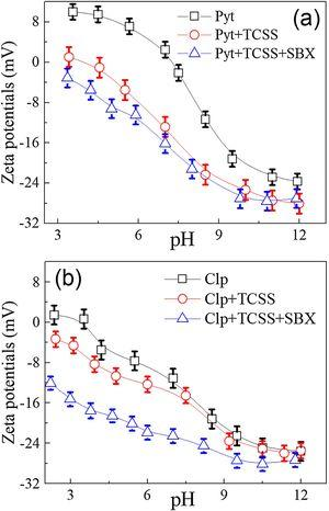 Zeta potential results of (a) pyrrhotite (Pyt) and (b) chalcopyrite (Clp) at different pH values in presence of 60mg/L TCSS and 20mg/L SBX.