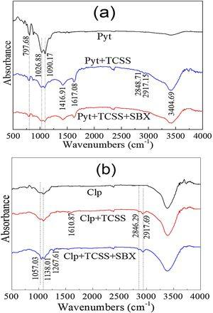 IR spectra of (a) pyrrhotite (Pyt) and (b) chalcopyrite (Clp) in presence of 60mg/L TCSS and 20mg/L SBX at pH 7.