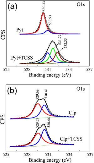 High resolution XPS spectra of O (1s) from surface of (a) pyrrhotite (Pyt) and (b) chalcopyrite (Clp) in absence and presence of 60mg/L TCSS.