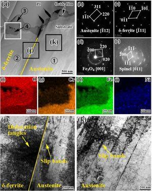 (a) STEM-HAADF image of cross-section of δ-ferrite–austenite interface of CF8A SS at 30% strain in PWR environment, (b)–(d) SAED images from positions ①–③ in (a), (c) FFT of high-resolution images of oxides of position ④. (f)–(i) EDS mapping of O, Fe, Cr, and Ni of framed area in (a). (j–k) Bright-field TEM images corresponding to labeled squares in (a).