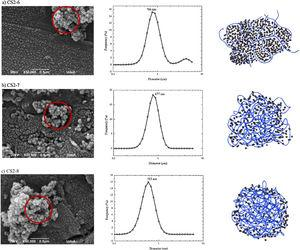 SEM micrographs of recovered solid materials (left side, showing primary particles and agglomerates with arrow and circle, respectively), DLS agglomerates size distribution in aqueous dispersion (center) and representation of the porous environment in a portion of agglomerated nanometric particles that form the solid materials (right side) for the CS-6 (a), CS-7 (b), and CS-8 (c) samples. The black dots and blue lines represent the silica network and chitosan chains, respectively. The interchain crowding reduces the available surface area and porous volume, being the CS-8 material the denser one.
