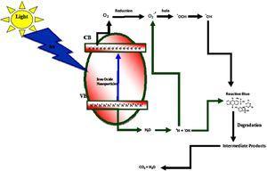 Proposed dye degradation mechanism by Fe2O3 NPs under UV irradiation.