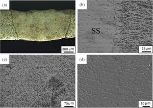 Microstructures in the fusion zone of the joint: (a) optical image of fusion zone; (b) optical image of fusion line; (c) optical image of fusion zone centerline; (d) SEM image of fusion zone.