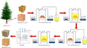 Respiratory impregnation modification process of Chinese fir wood.