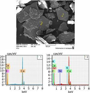 SEM imaging and EDS analysis results for self-healing products of SH1-1.