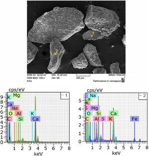 SEM imaging and EDS analysis results for self-healing products of SH1-2.