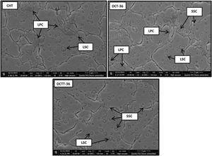 Microstructure views of AISI D2 cold work tool steel samples (LPC - Large primary carbides, LSC - Large secondary carbides, SSC - Small secondary carbides).