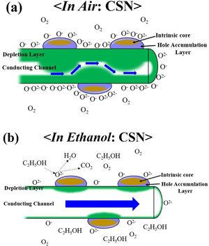 Schematic images presenting the electric structure of single Cr2O3 nanoparticle-anchored SnO2 nanowire when (a) placed in air ambient and (b) exposed to ethanol gas.