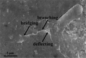 Propagation of cracks introduced by hardness indentation.