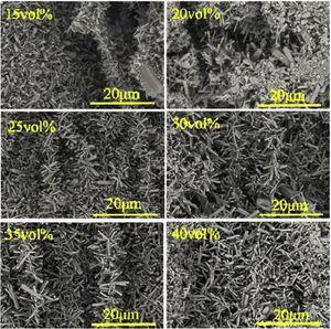 Magnification of SEM micrographs of the porous Si3N4 ceramics with different solid contents.