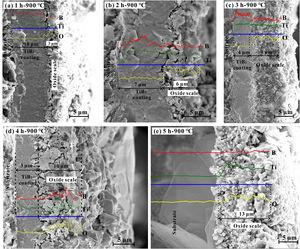 Cross-sectional SEM images and element line scanning EDS analyses of the TiB2 coating after oxidation at 900°C for different durations in air.