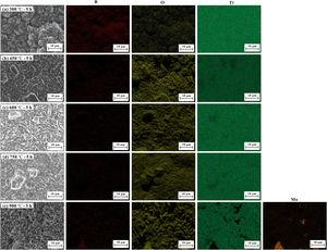 SEM images and EDS mapping of Mo coated with TiB2 oxidised in air at 300–900°C for 5h.