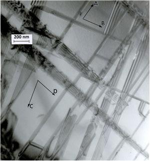 TEM bright-field image showing dense stacking fault arrays in HIPed/annealed (ASTM schedule F-75) Co-Cr-Mo alloy in Fig. 16. The fcc Co-Cr grain surface orientation is (103). Stacking faults are activated in all four pourable {111} planes: A (1¯ 11) plane making an angle of 68.6° with the (103) surface in the [34 1¯] direction; B (11 1¯) plane making an angle of 68.6° with the (103) surface plane, having a [3¯ 41] trace direction; C (1 1¯ 1) plane making an angle of 43.1° with (103), in the [3¯2¯ 1] trace direction; D (111) plane at 43.1° and in the [3¯ 21] trace direction.