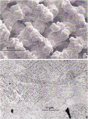 EBM-fabricated Ti-6Al-4V rhombic dodecahedral mesh (Fig. 4a) section showing rough, particle-sinter strut surfaces (a) and corresponding, rapidly cooled αʹ-phase (martensitic) microstructure (b). From Murr [42].