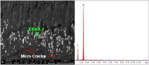 SEM image of CVD-coated cutting tool under dry cutting conditions and EDS analysis.