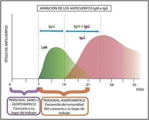 Organización laboral según perfil inmunológico teórico.