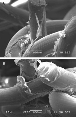 A) Microfotografía en sección de la probeta PH (×200). B) Microfotografía en sección de la probeta PBR (×200).